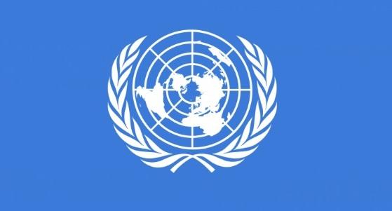 UN jobs 2